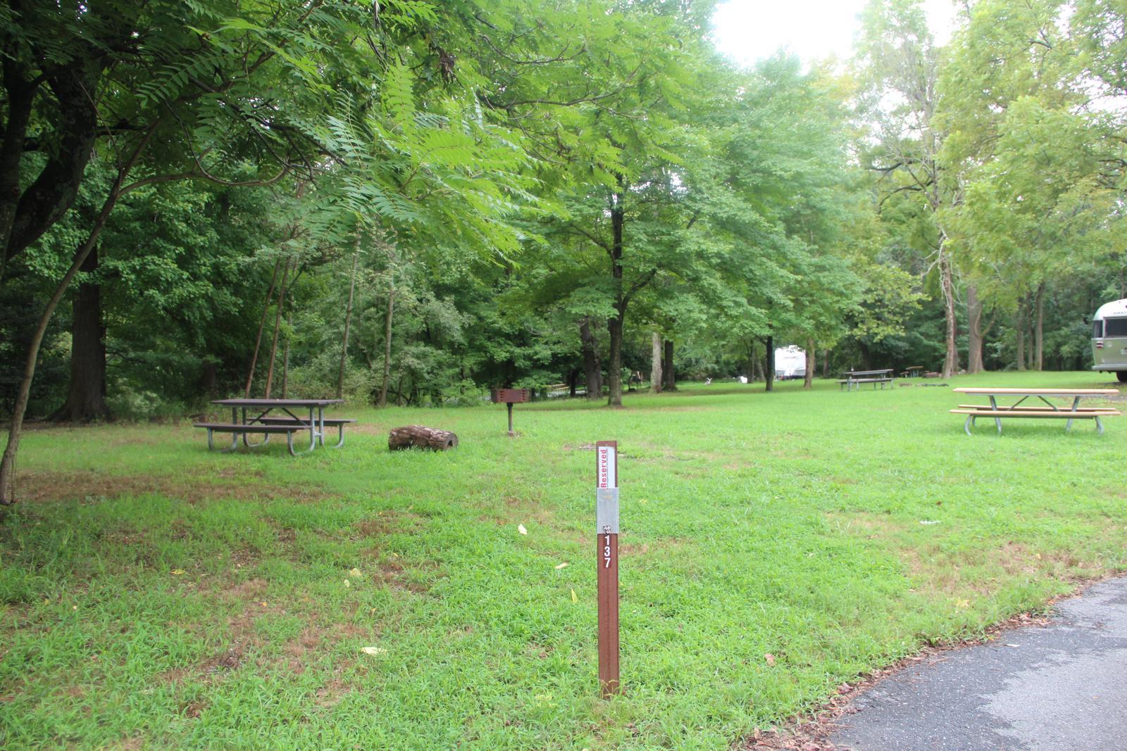 Greenbelt Park Campground Site 137