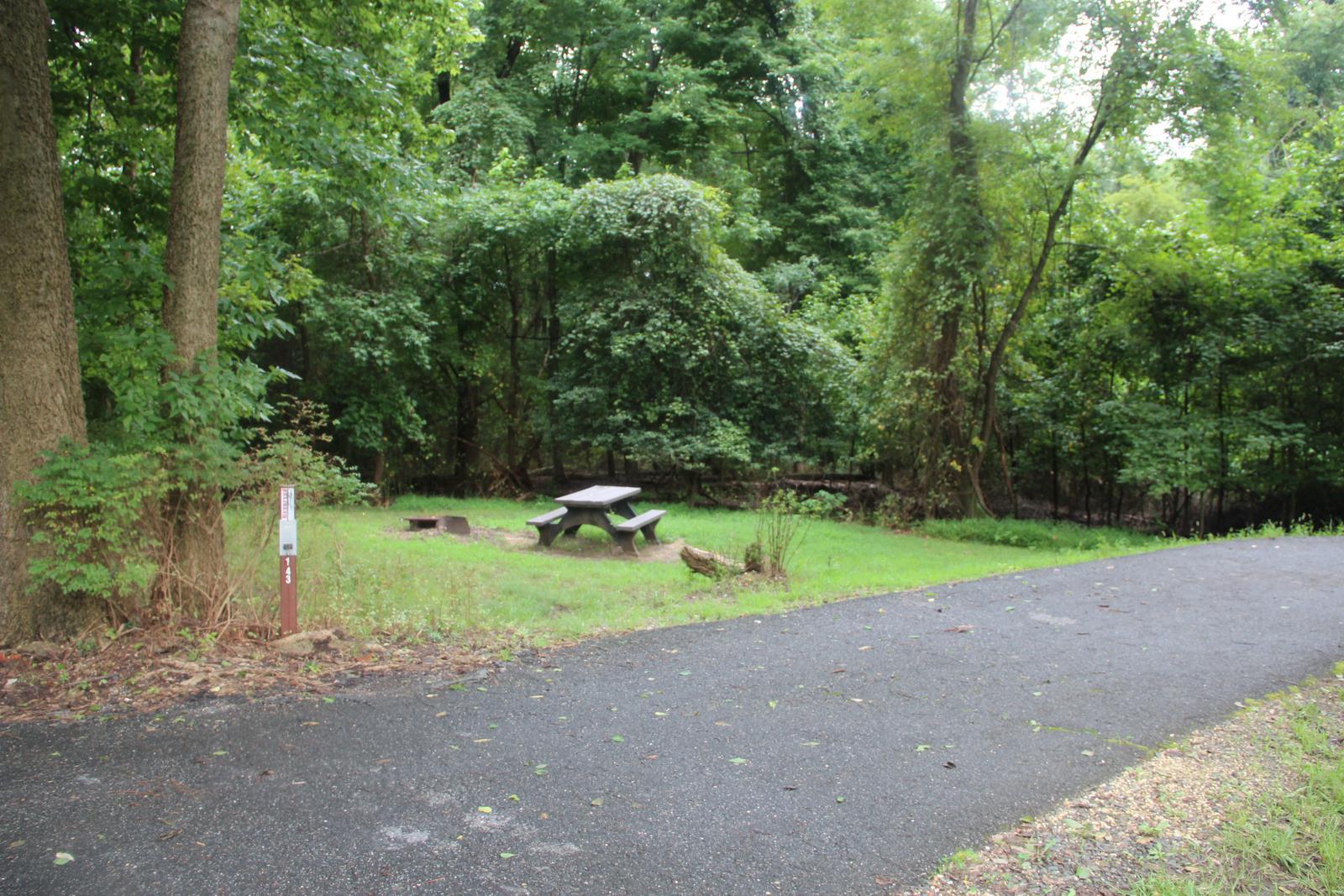 Greenbelt Park Campground Site 143