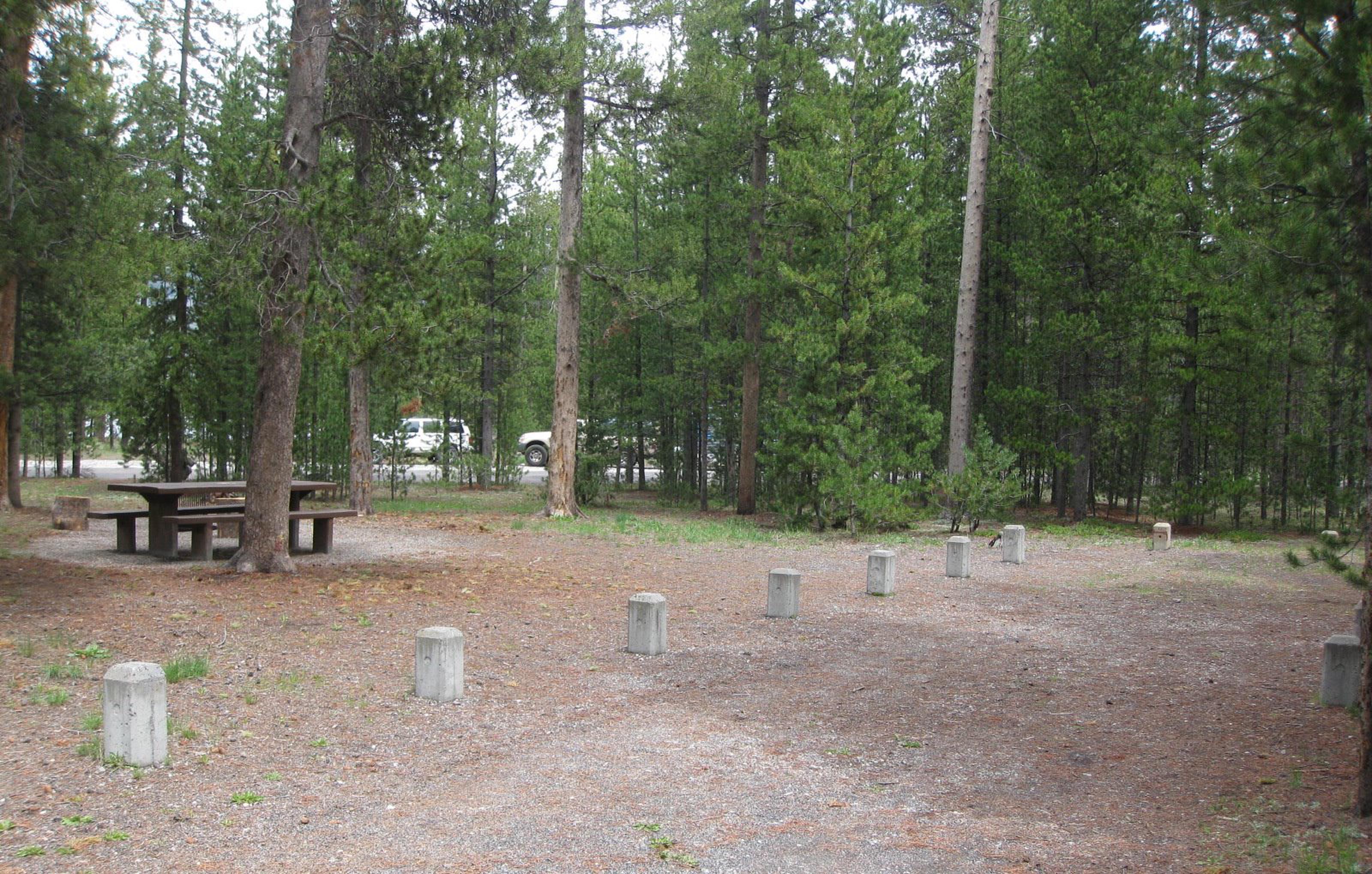 Site A19
