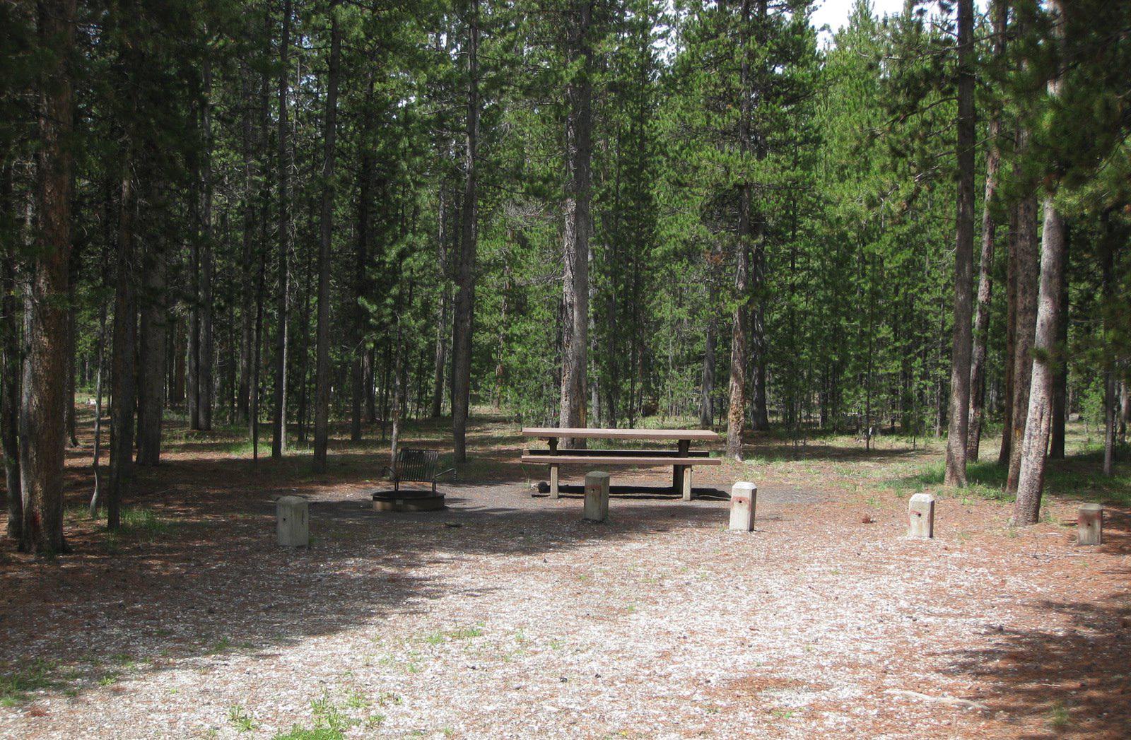 Site B11