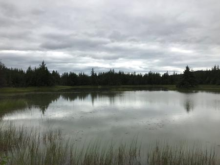 Kettle Pond in the Campground