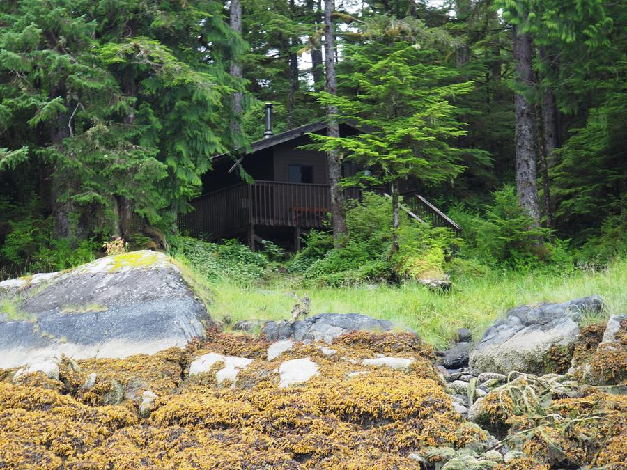 Frosty Bay Cabin with surroundings