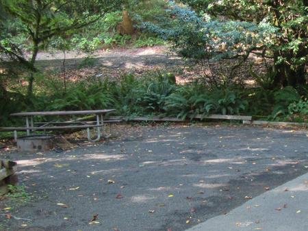 Site includes campground table and Fire ring with a 33' parking spur