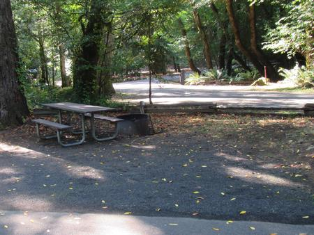 Site includes picnic table with fire ring and views of the river