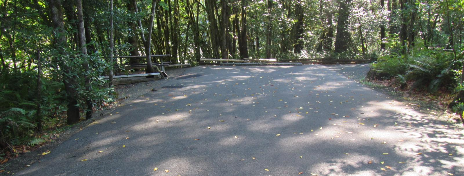 Site includes a 57' parking spur, picnic table and fire ring