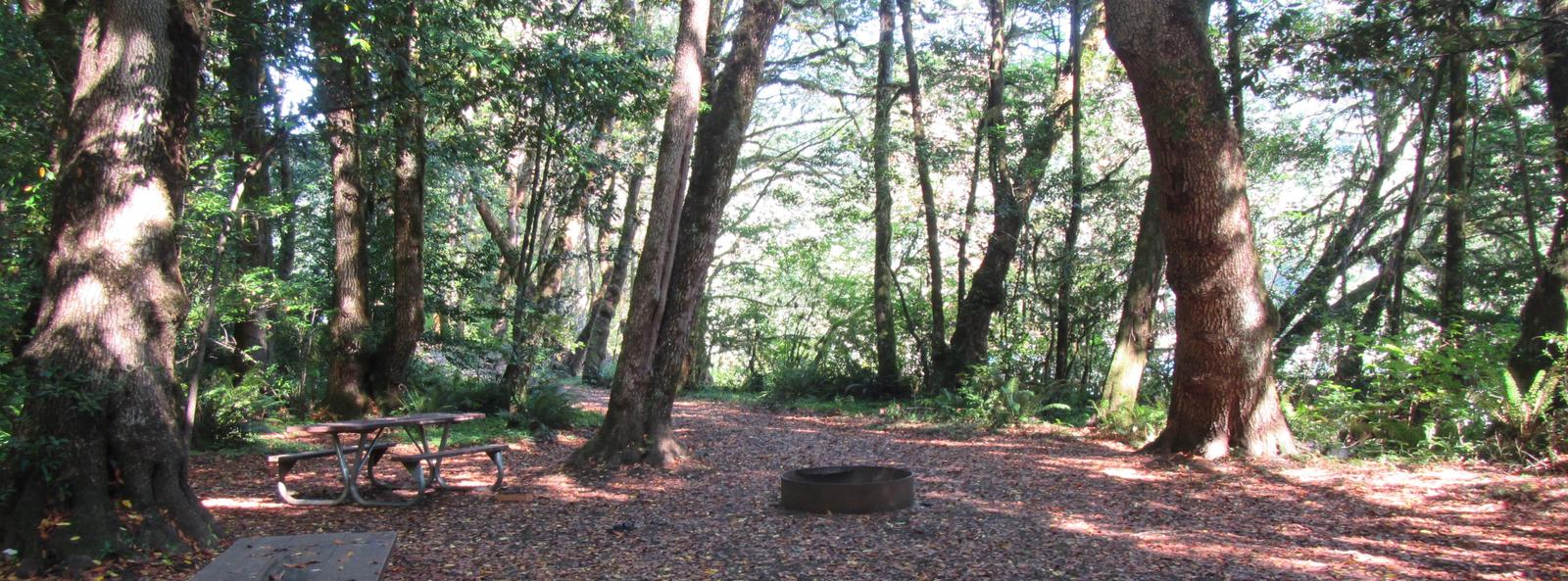 Group picnic area with fire ring and multiple picnic tables, very close to the river