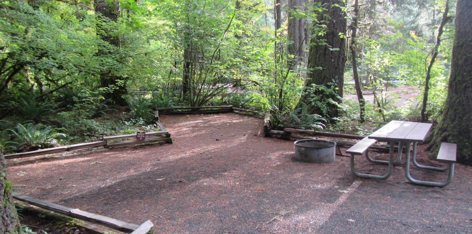 Site includes tent camping area, with picnic table and fire ring