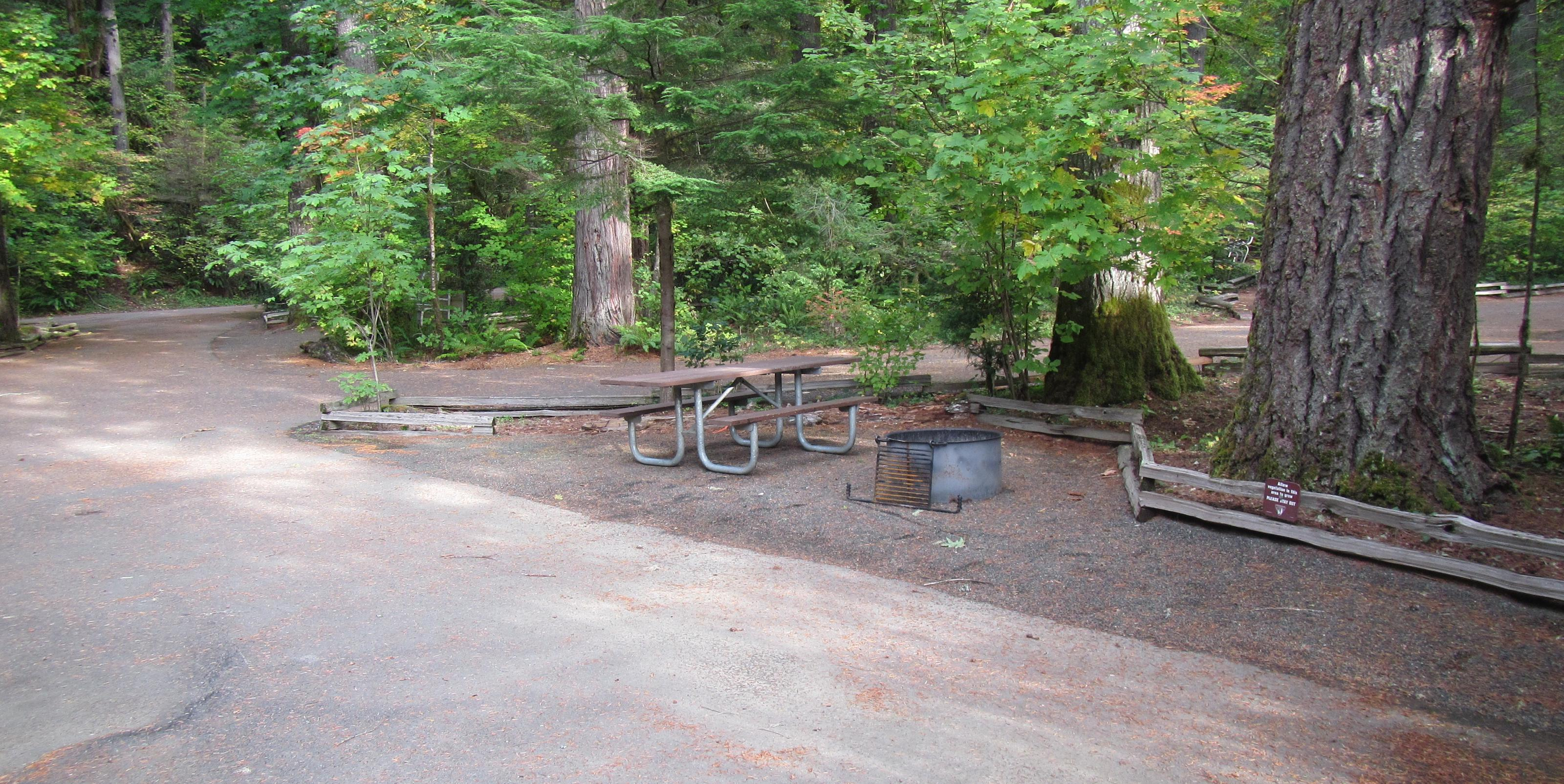 Site includes picnic table and fire ring