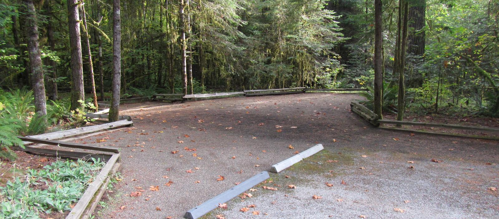 Large tent camping area, does not include picnic table