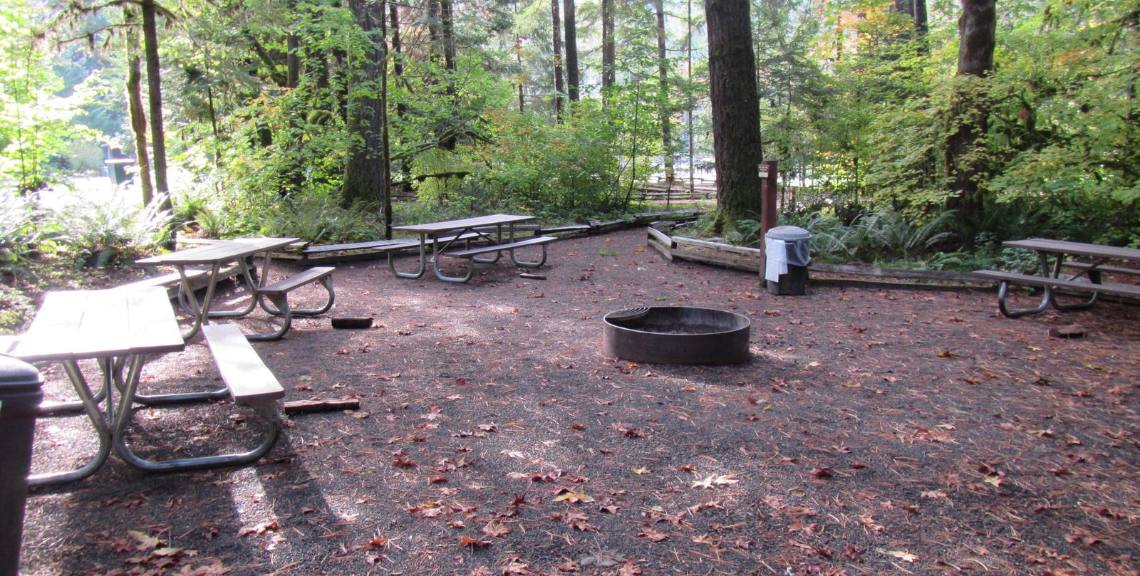 Group fire area with multiple picnic tables