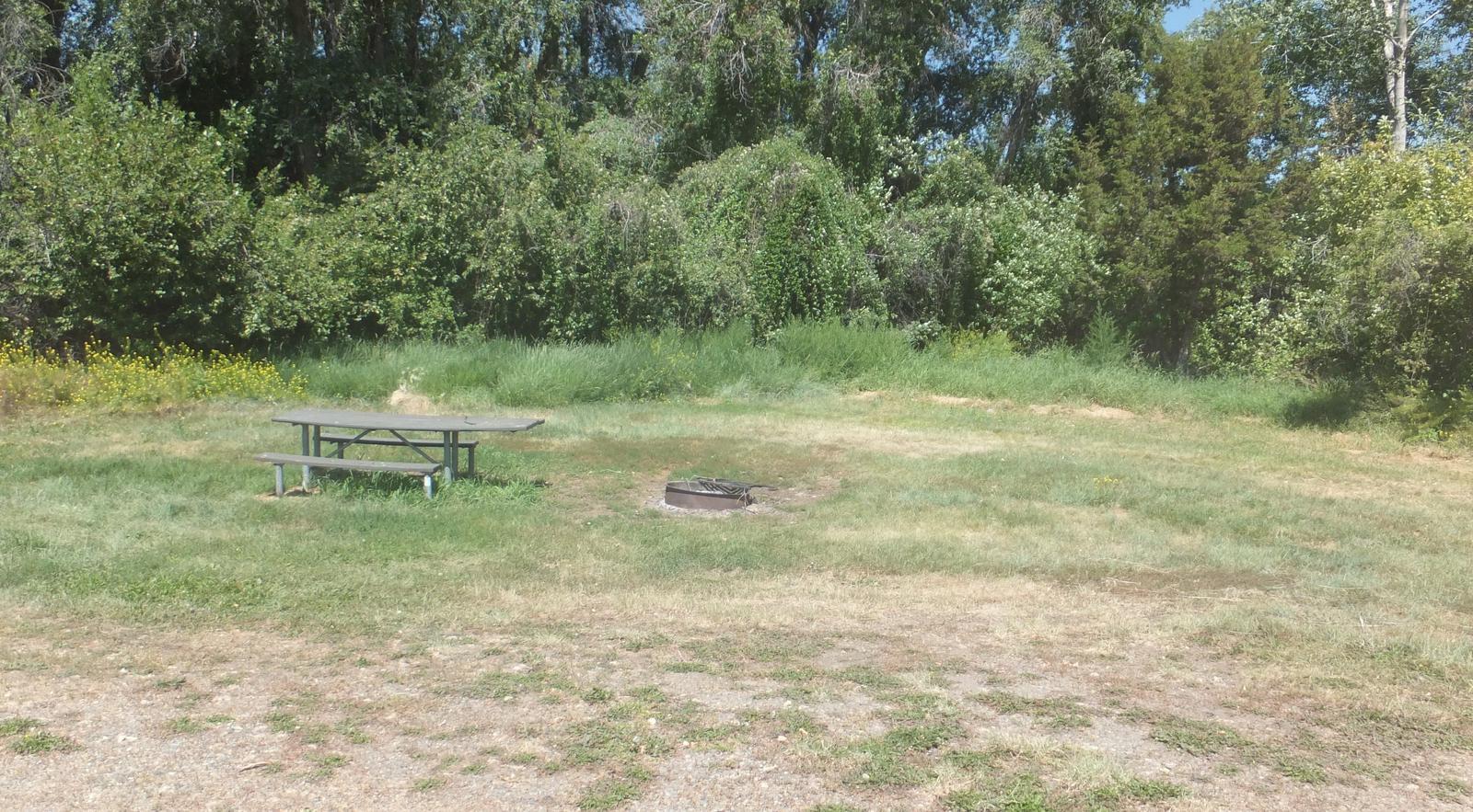 Hellgate Campground - Campsite 5