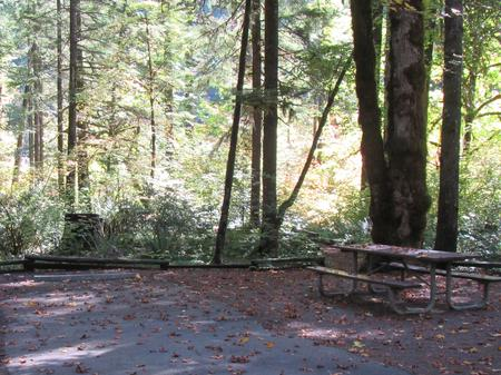 Picnic table and fire ring, access to river trail