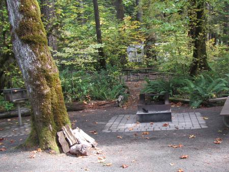 Grill, fire pit, picnic table with trail leading to site #23