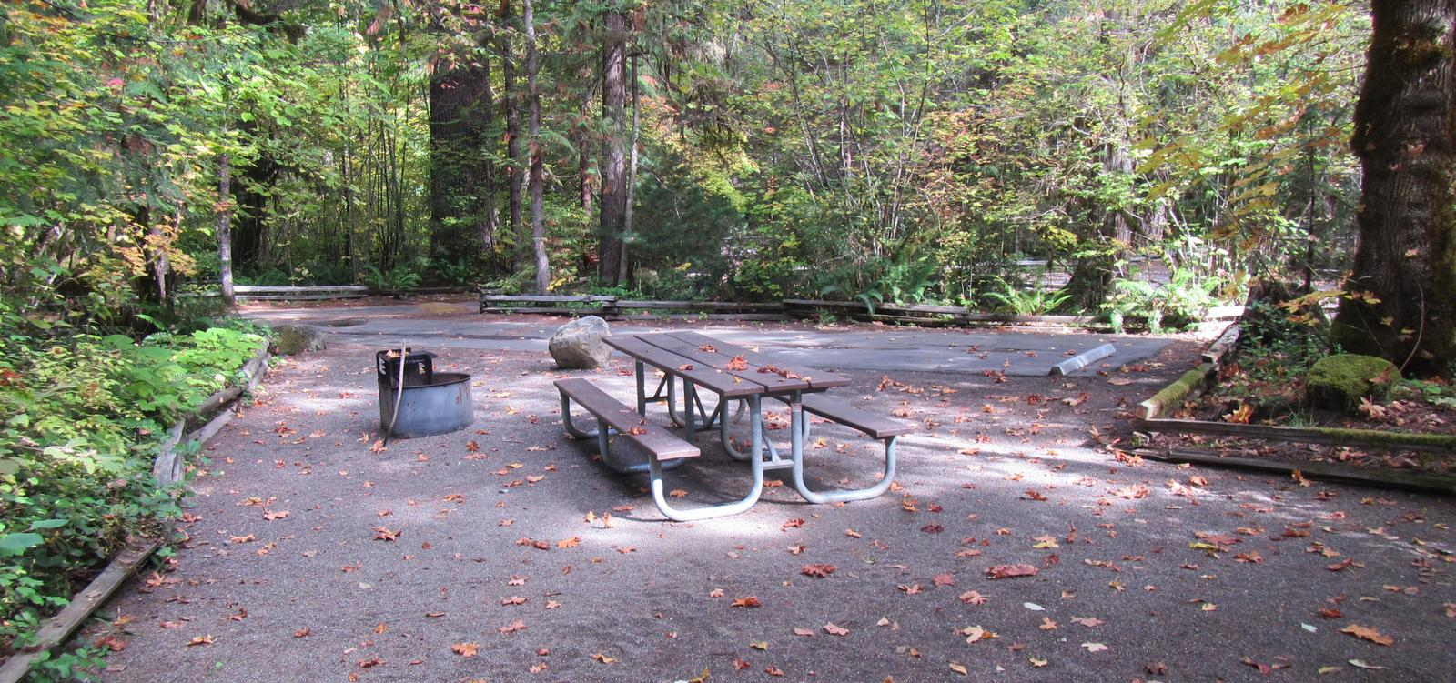 Picnic table and fire ring looking towards other camp sites