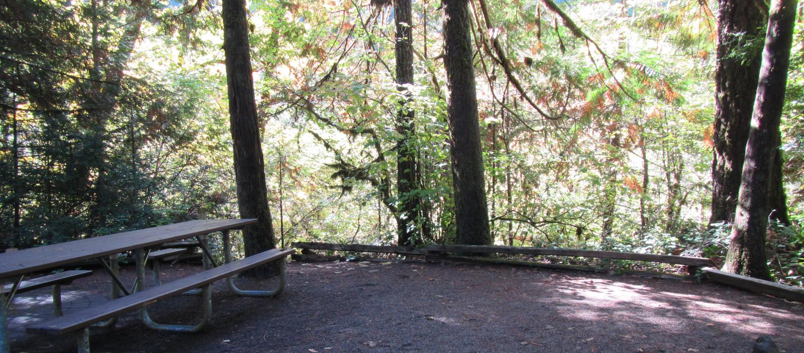 Site 28, picnic table with view of the river