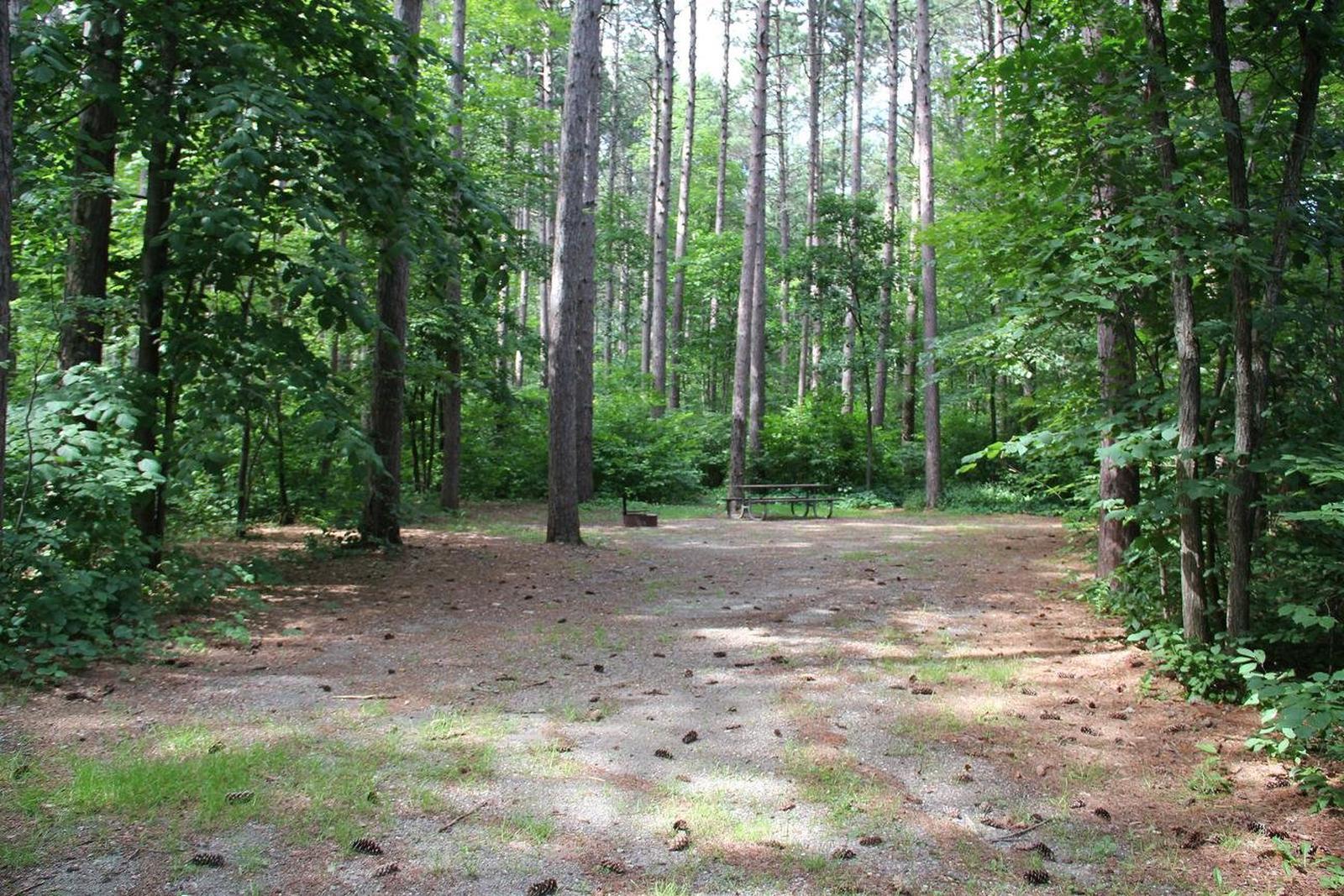 Site 7 South