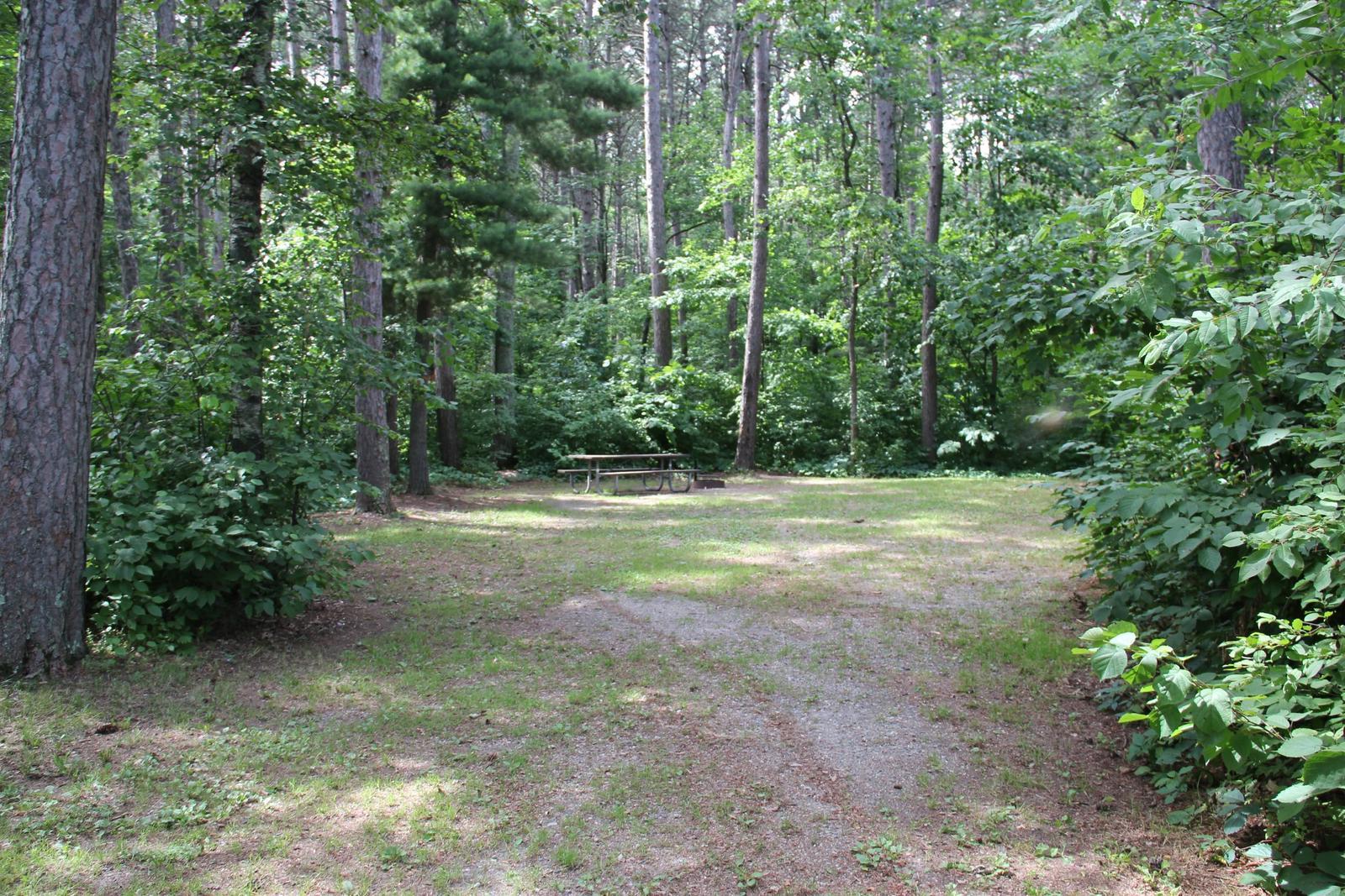 Site 10 South