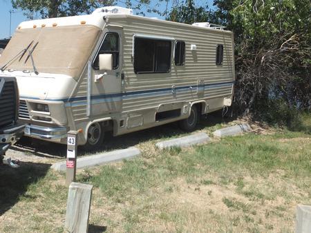 Hellgate Campground - Campsite 43