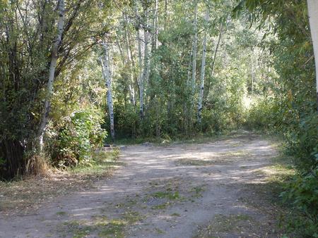 Campsite 16Parking Pad