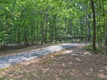 McKinney Campground Site 1