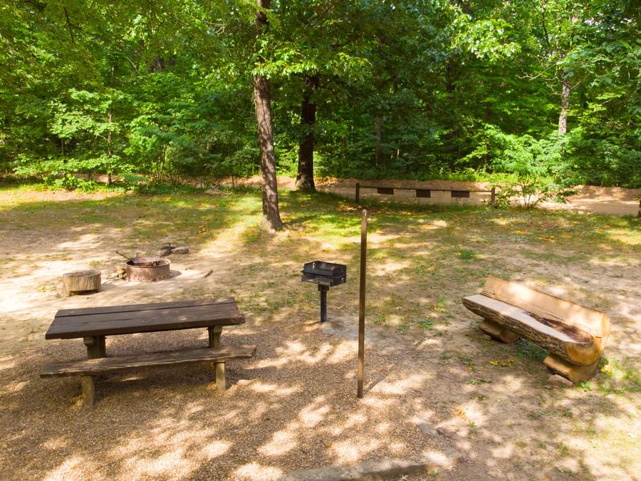 White Rock Mountain Campsite 2