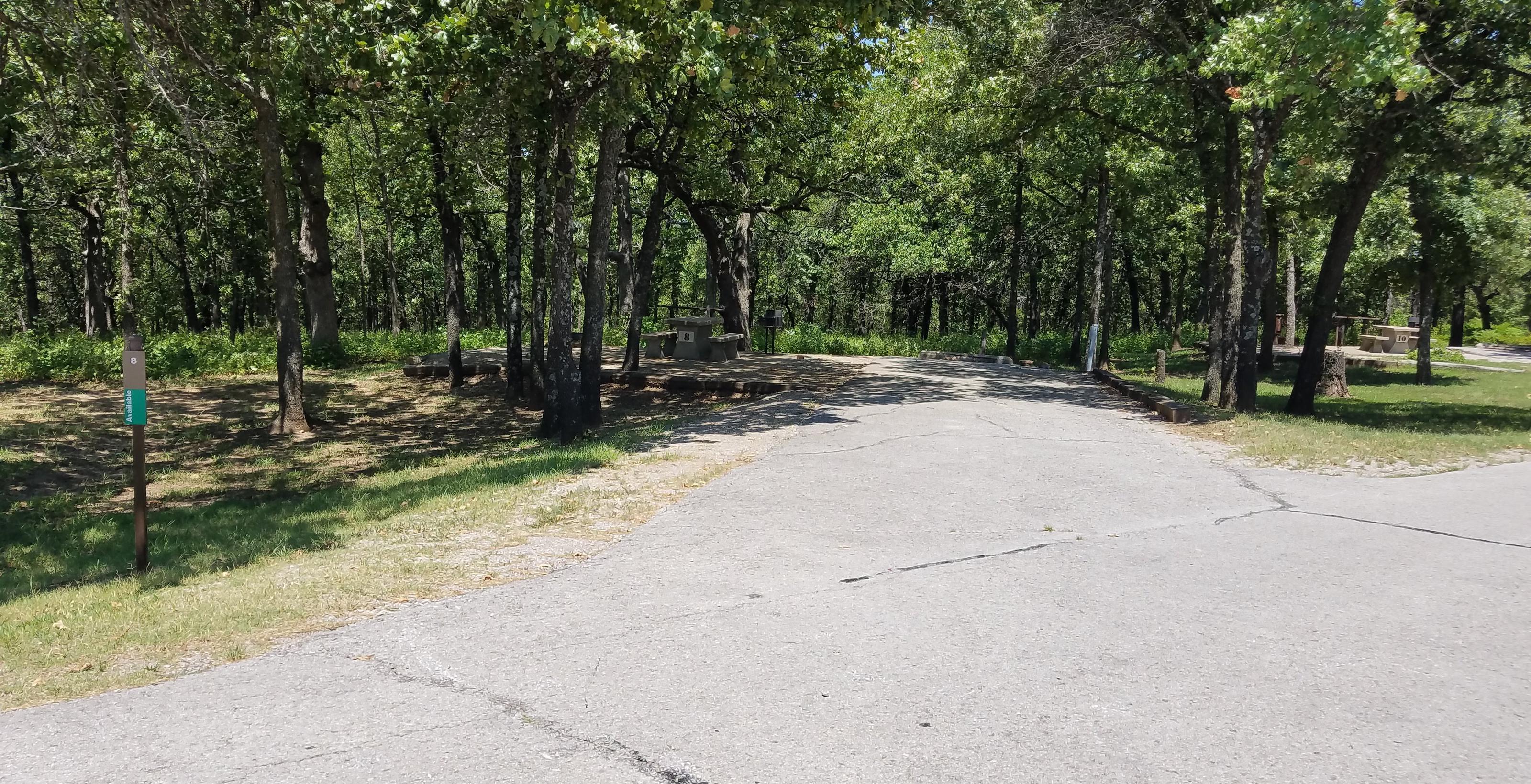 Birch Cove Site #8