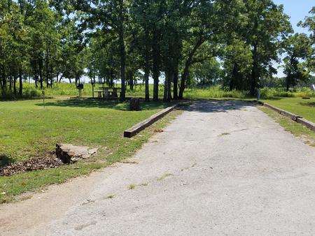 Birch Cove Site #11