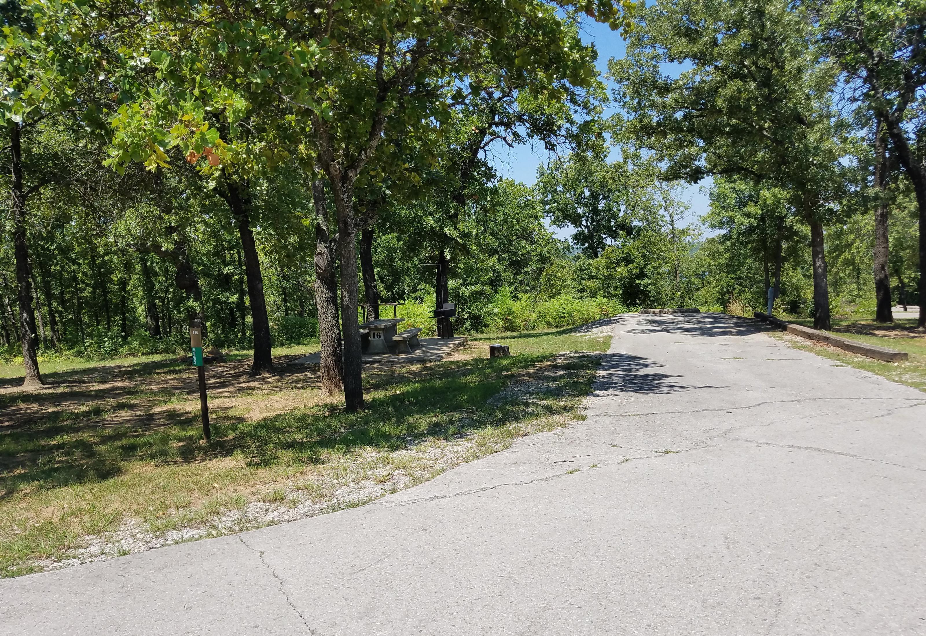 Birch Cove Site #16
