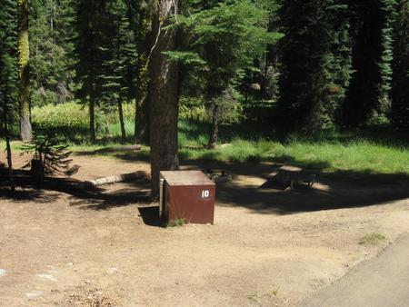Site 10, Partial Shade, Near Meadow and Restrooms