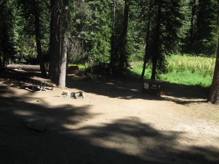 Campsite 12, Partial Shade, Near Creek