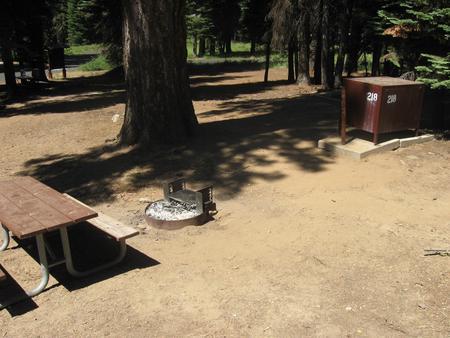 Site 218, partial shade