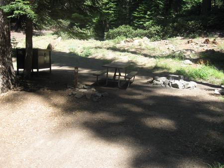 Site 212, partial shade