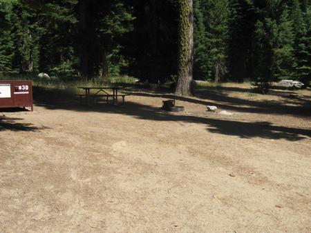 Campsite 30, Partial Shade, Near Creek, Meadow, and Restrooms
