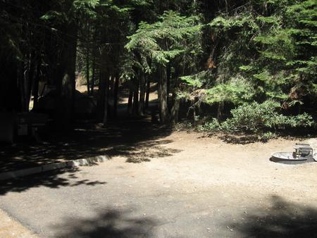 Site 211, shady