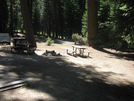 Site 210, partial shade