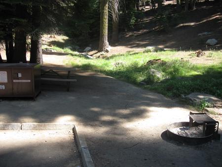 Site 209, partial shade