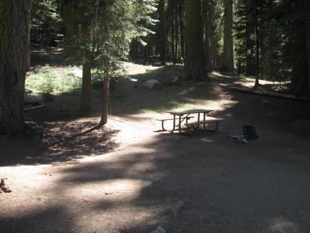 Site 208, partial shade