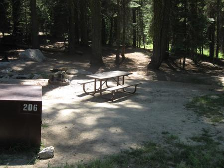 Site 206, partial shade