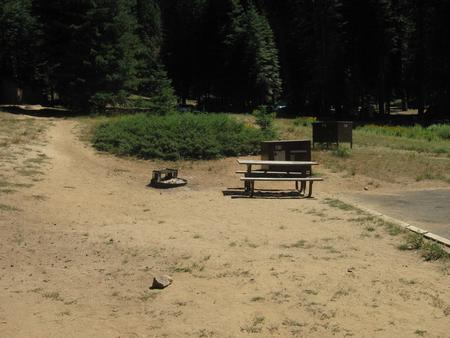 Site 201, sunny, small site