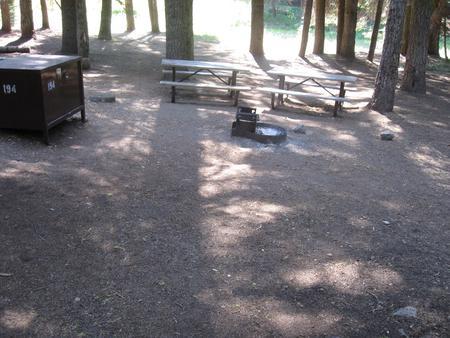Site 194, shady, near creek and meadow