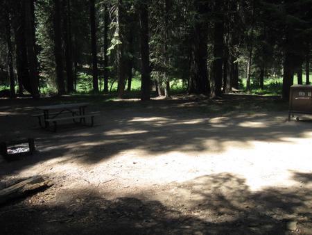 Site 193, shady, near creek, near meadow, near roadway