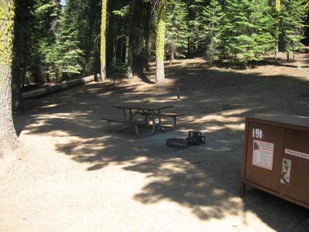 Site 191, partial shade