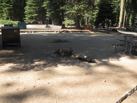 Site 187, partial shade