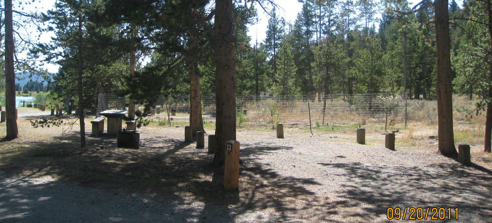 Site 13, campsite surrounded by pine trees, picnic table & fire ringSite 13