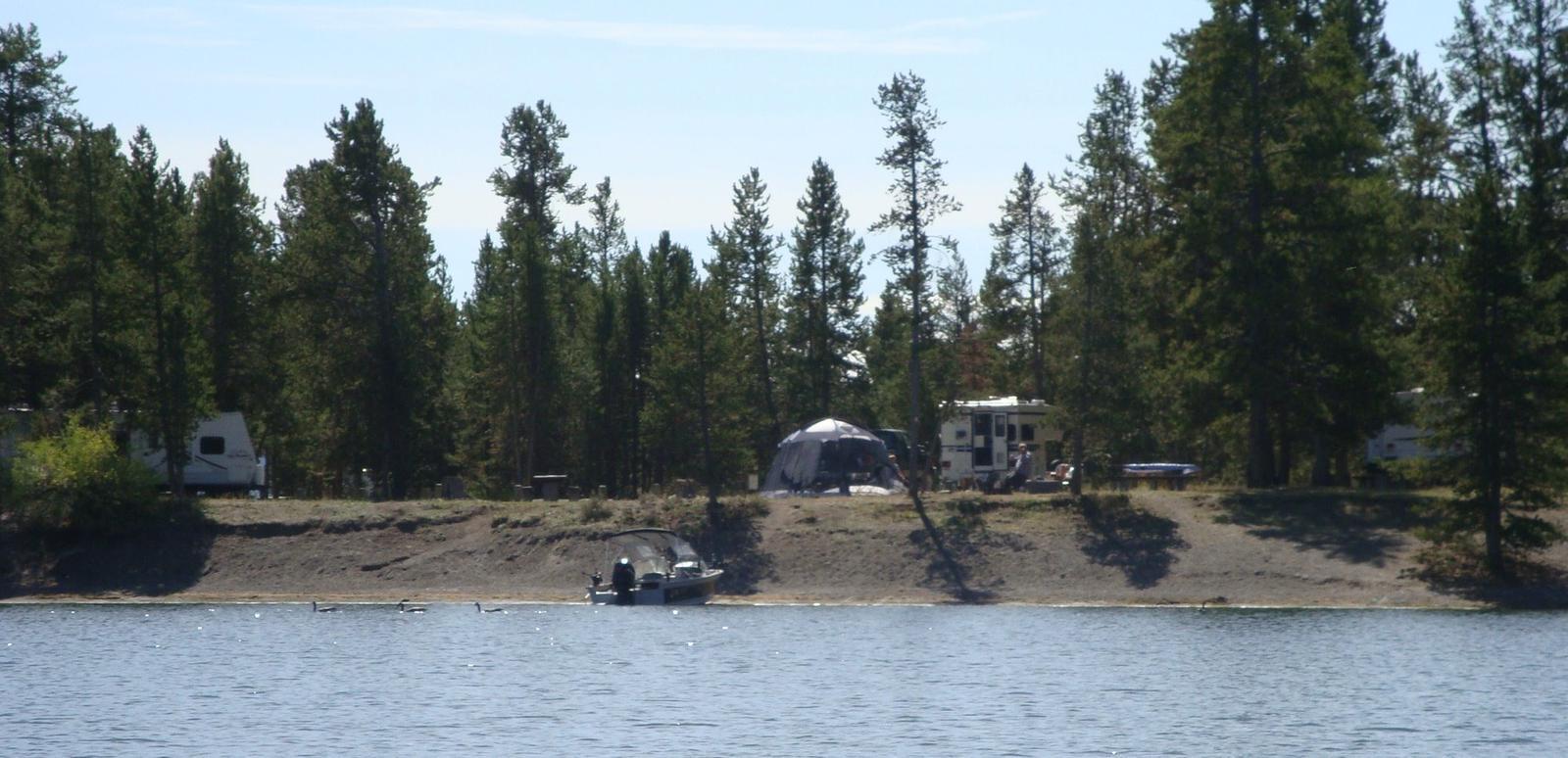 View of Lonesomehurst Campground from Hebgen Lake, boat, RV, tent  & pine treesLonesomehurst Campground