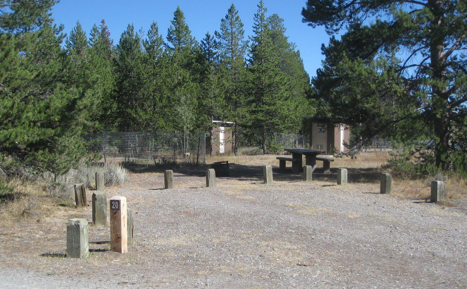 Site 20, campsite surrounded by pine trees, picnic table & fire ringSite 20