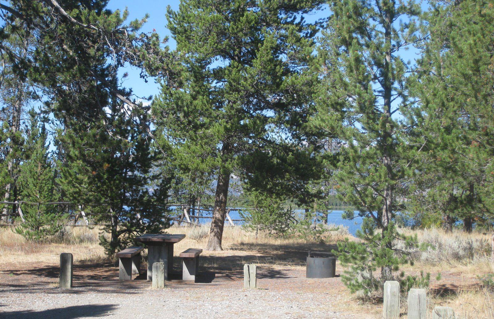 Site 21, campsite surrounded by pine trees, picnic table & fire ringSite 21