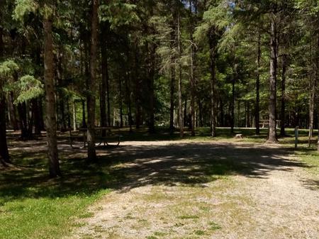 Campsite #47