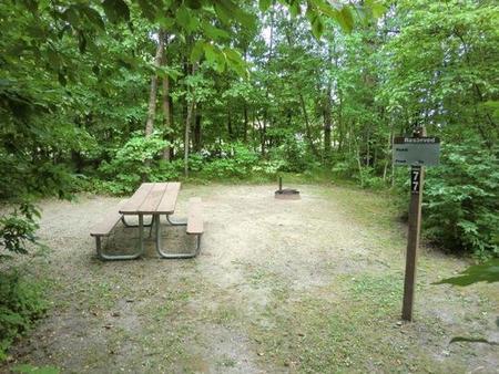 Campsite #77