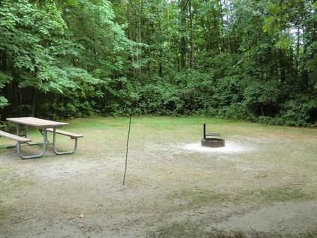 Campsite #78